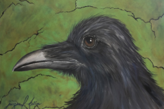 On Watch: Raven with Green