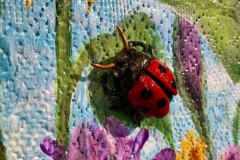 Garden Party, Lady Bug Detail